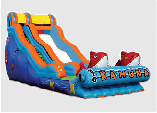 Inflatable Slide Rental Toronto
